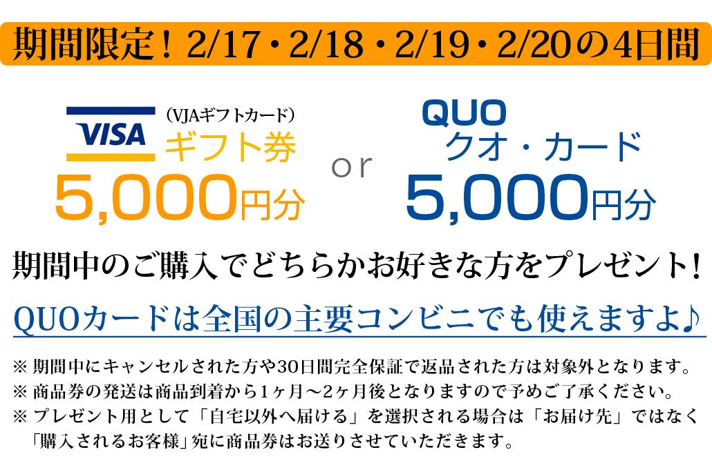 サイエンスミラブル正規代理店 VISAギフト券かQUOカードが最大5000円分がもらえるキャンペーン
