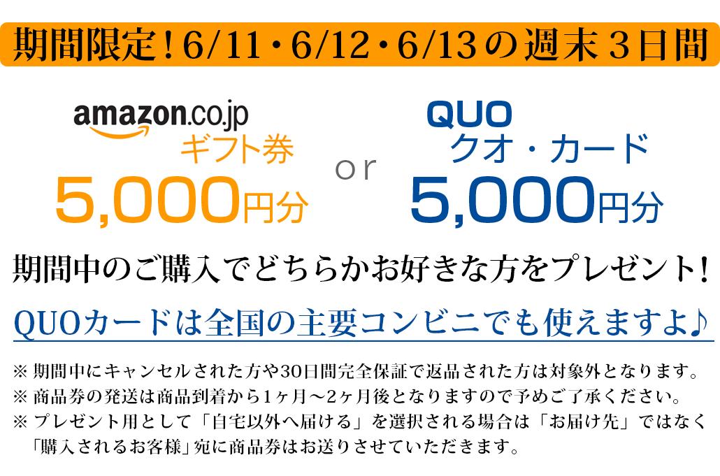 サイエンスミラブル正規代理店 AMAZONギフト券かQUOカードが最大5000円分がもらえるキャンペーン